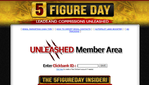 5-Figure-Day-Review-300x171